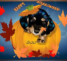Halloween Dashund Puppy-Boo by Lotacats