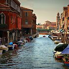 Murano by Barbara  Brown
