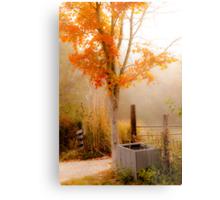 Burst of Orange Metal Print