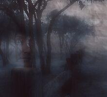 Memories by Doug Gruber