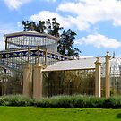 Adelaide Botanical Gardens by Ali Brown