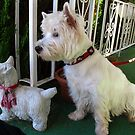 Westie Sentinals by MarianBendeth
