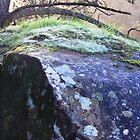 Cataract Gorge Rocks 1E by MyceanSage