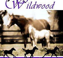 Wildwood Quarterhorses by Wendy  Slee