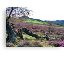 Hawnby Moor Canvas Print