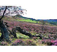 Hawnby Moor Photographic Print