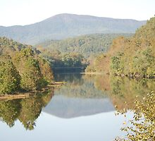 Reflections on the Blue Ridge Parkway-Va by wynnsfalls