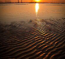 Sand Wrinkles by Gavin Poh