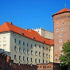Wawel Castle by Dfilyagin