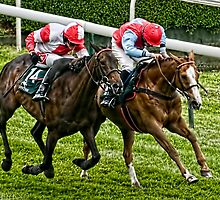 Simple Glory and Solway Minstrel by Tarrby