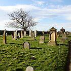 Happy graveyard by Stefan D