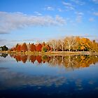 Autumn Reflections by Jake Gumley