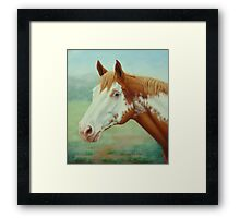 Colourful Warrior-Out Of The Mist Framed Print