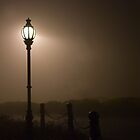 Misty Street Light by Murray Wills