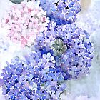 Hydrangea Demo by Marie Theron
