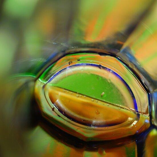 Through A Glass Brightly by duncandragon