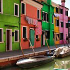 A Day in Burano by Barbara  Brown