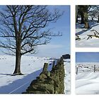 A White Christmas - Saddleworth Moor by dawnandchris
