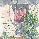 Vine-shaded window, Les Michelots, France by ian osborne