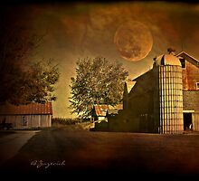 Harvest Moon by Barbara Zuzevich