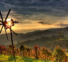 Golden austrian Fall by Delfino