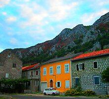 Fica in Montenegro Full Colour Photograph by Marko Mitic