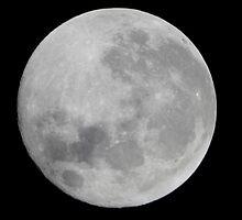 Full moon. by Stefan D