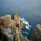 Cape Raoul by andychiz