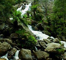 St Columbia falls, Tasmania by andychiz