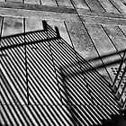 Reflected Railing by abmay