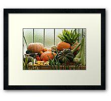 autumn harvest 2 Framed Print