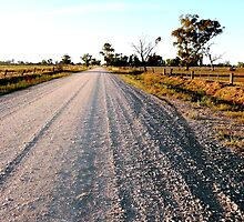 Country road - Echuca by Janette Anderson