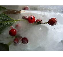Holly berries and that special Christmas light Photographic Print