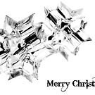 christmas card 2010 by blueeyesjus