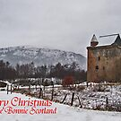 merry christmas fae bonnie scotland by Alan Findlater