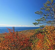 """Autumn View of Lake Superior"" by MarieR"