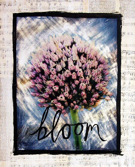 Bloom by DanielleQ