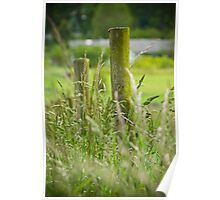 Weeds and wild hay Poster