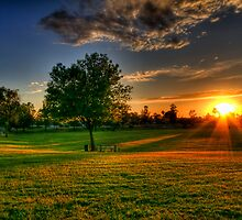Sunset at the Park  by Saija  Lehtonen