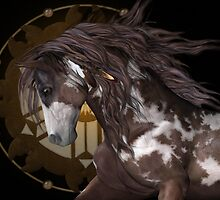 Apache .. The Stallion by LoneAngel