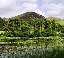 Eildon Hills by Escocia Photography Scottish Borders
