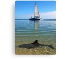 """Monkey Mia Magic"" Shark Bay, Western Australia Canvas Print"