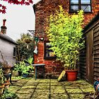 Autumn garden, Bungay by Simon Duckworth