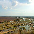 AIRIAL VIEW - ELEPHANTS RIVER &quot;KRUGER NATIONAL PARK&quot; SA. by Magaret Meintjes