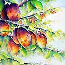 Victoria plum harvest by LorusMaver
