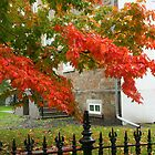 A Bit of Autumn in Quebec City by Laurel Talabere