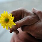 Hands and flower by James  Kerr