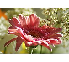 Think Pink ~ Breast Cancer Awareness ~ Photographic Print