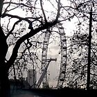 The London Eye by Elliott  Egan
