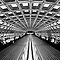 November Avatar Challenge - Tunnel Vision Shapes & Patterns